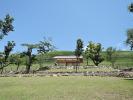 The Nara Park