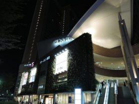 Beautiful Ohimachi LED lights