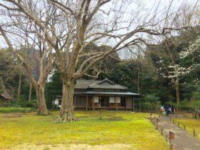 Japanese tea room in the garden