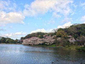 Lake in Sankeien