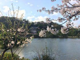 Beautiful scene in Sankeien