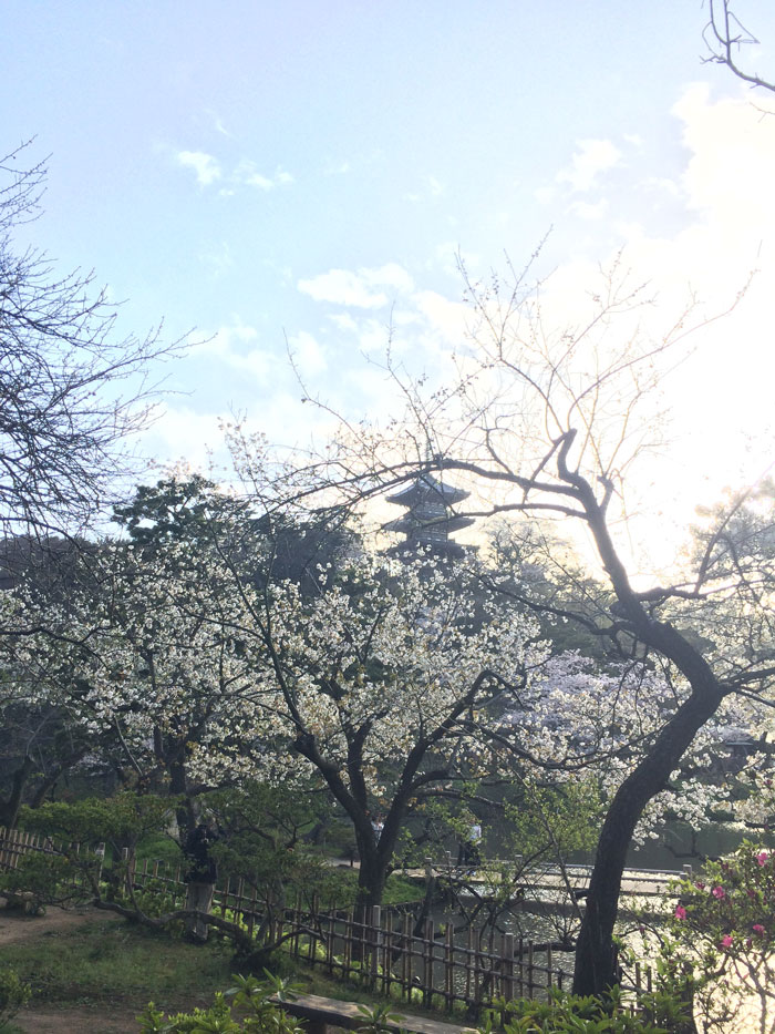 Tower in Sankeien