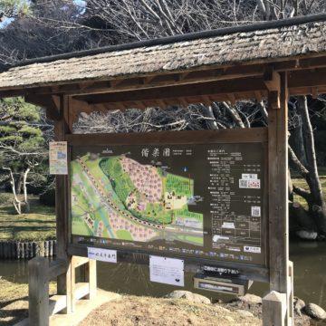 Mito Kairakuen plum garden